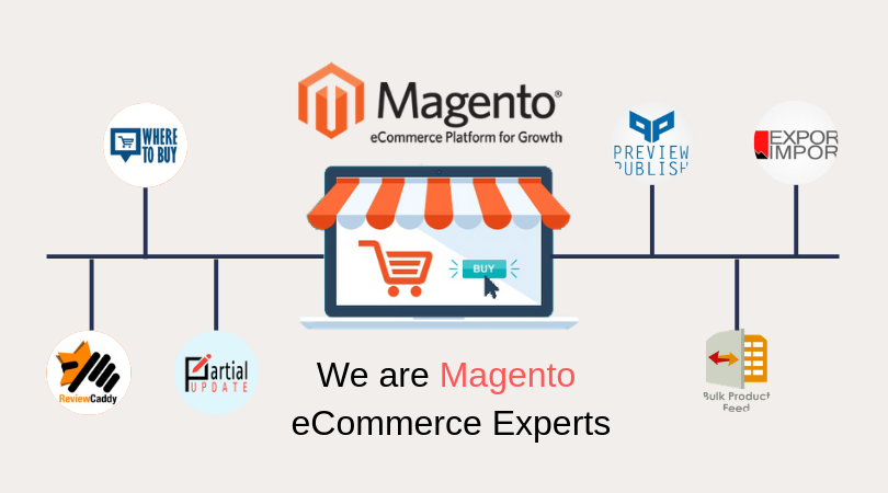 Image result for Magento service